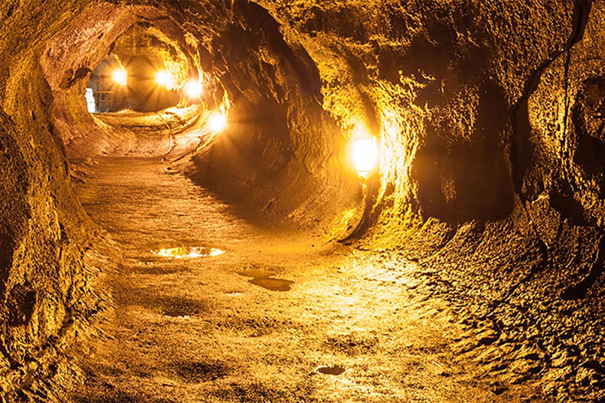 16bea78817 Volcano Tours Departing Oahu - Aloha Hawaiian Holidays